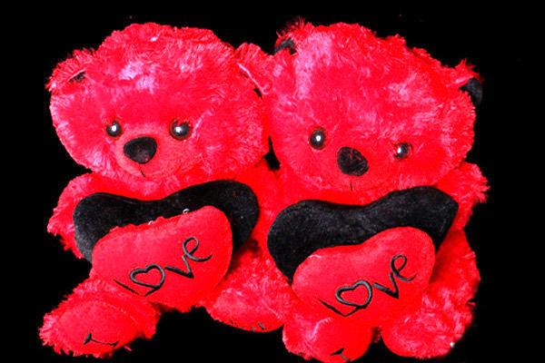 بخت سیاه خرسهای قرمز ولنتاین/ بلای که سرمایه داری بر سر ما آورد!