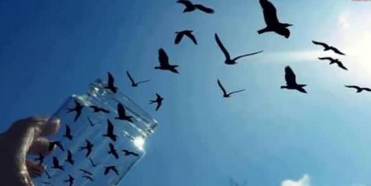 آزادی ۹۱ زندانی توسط عفو رهبری در آذربایجان غربی