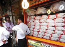 بیماری تنفسی عامل گرانی مرغ در آذربایجانغربی/روزهای آتی بازار به ثبات میرسد