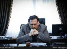 تخصیص ماهانه ۱۰ کیلو مرغ، ۲ کیلو گوشت گوسفند و ۱۰ کیلو شیر به هر خانوار ایرانی